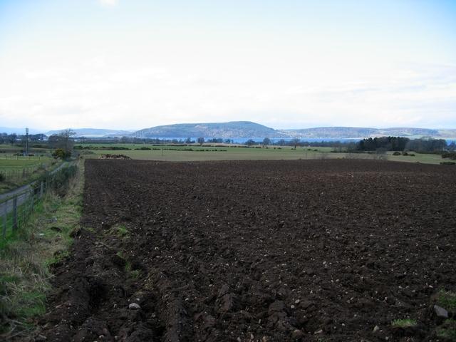 Field at Ashton Farm