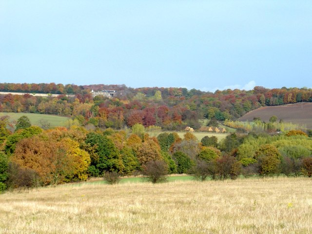 Looking over woodland towards Wentworth Woodhouse