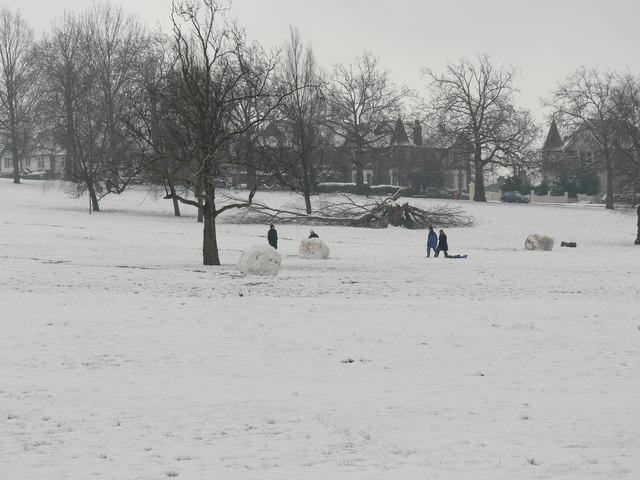 Snow on Streatham common