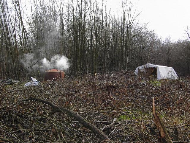 Charcoal burning, Charcoal Burners Road, Savernake (2)
