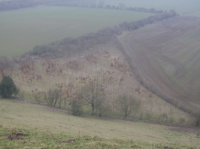 Looking down from Inkpen Hill