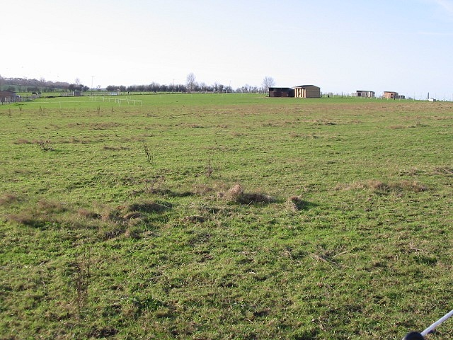 Horse paddocks to the south of road