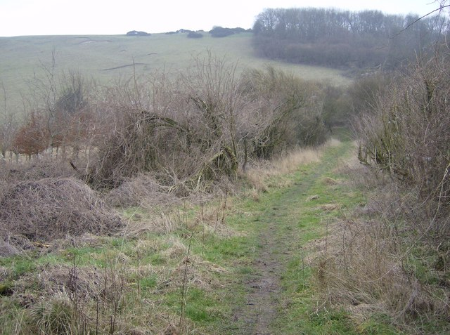 Path to Inkpen Hill