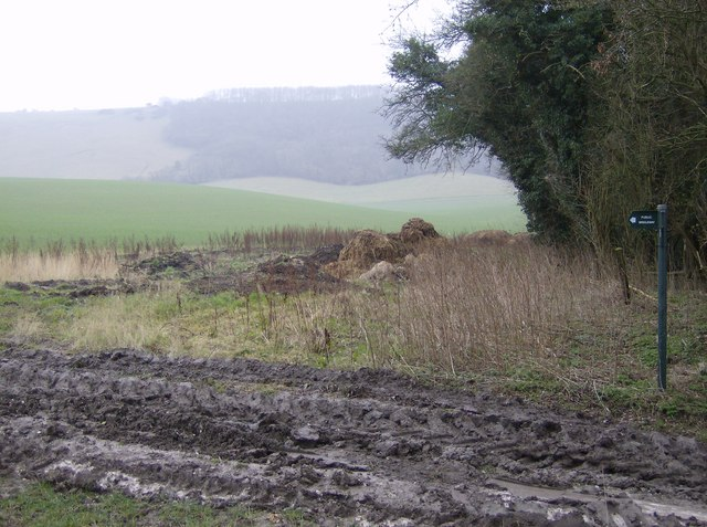Bungum Lane and Inkpen Hill