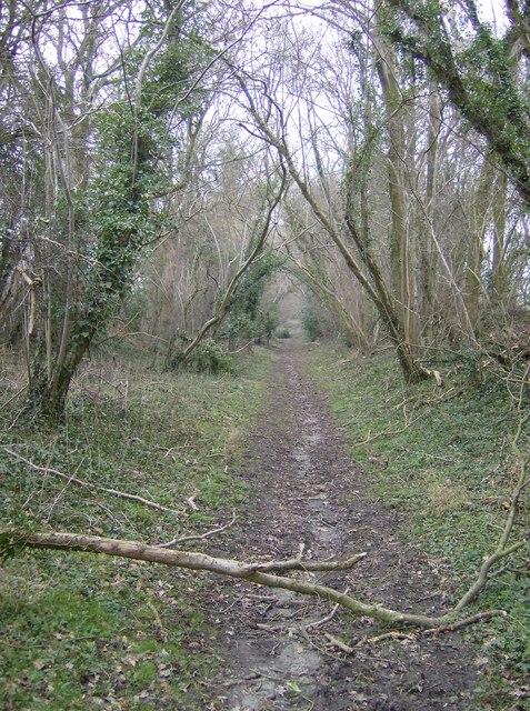 Bungum Lane