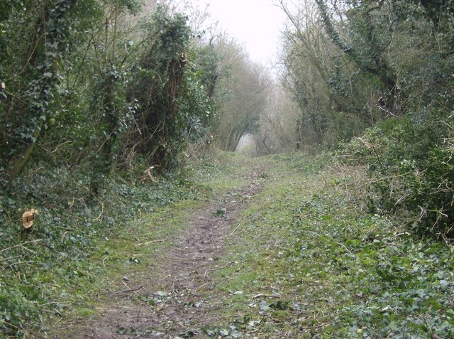 Bridleway near Lower Green