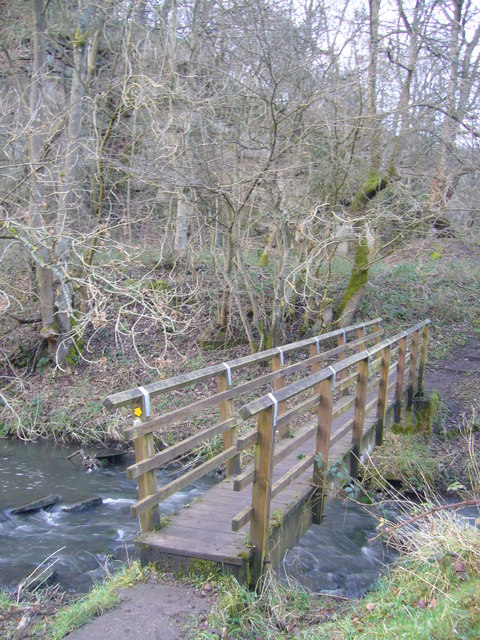 Footbridge over Causey Burn