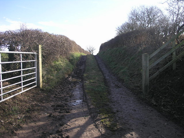 Path to Ranslett
