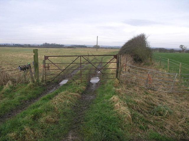 Rusty Gate and Tracks