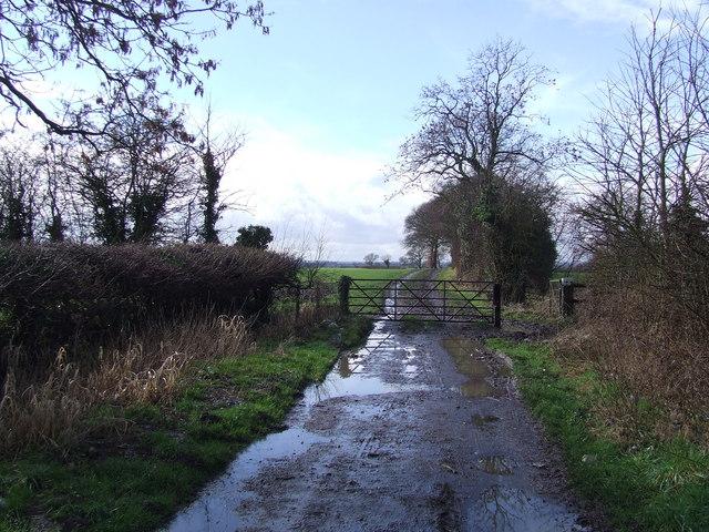 End of Moxons Farm Lane
