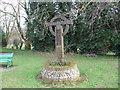 TM1598 : Wreningham Village Sign by Ian Robertson