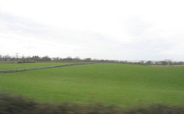 Farmland at Maes Mawr