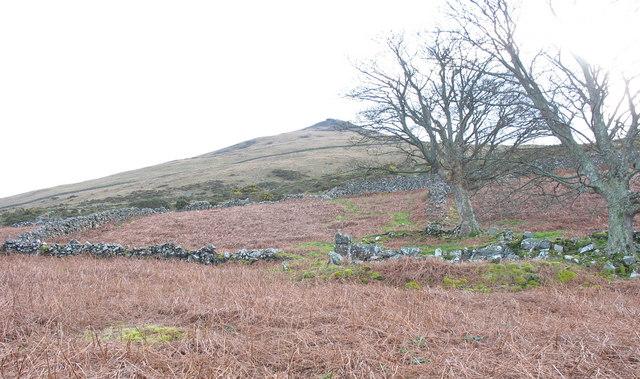 Abandoned intake land
