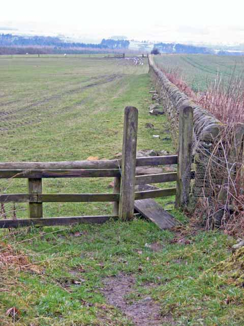 Stile and wall below Brandon Lane