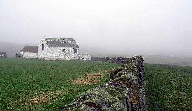 Whitewashed  (Raby Estates Barn) : Gibbsneese