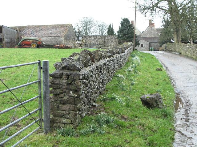 Whitnell Farm