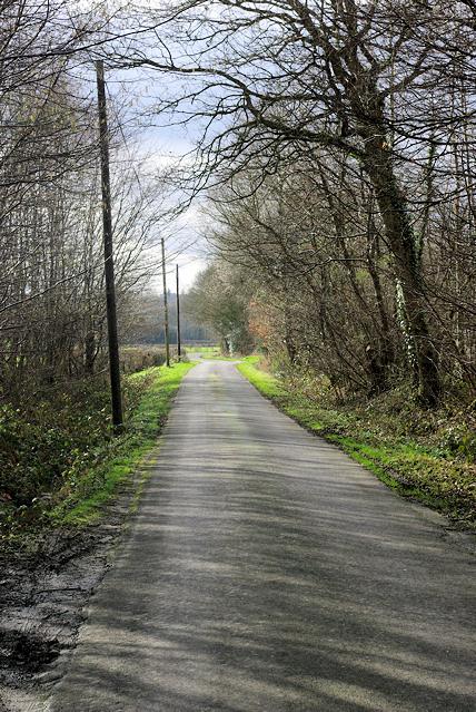Grandshore Lane