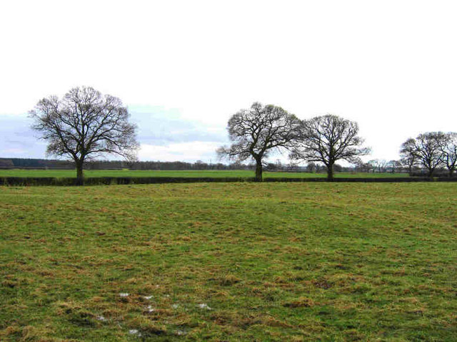 The View From Grimston Grange