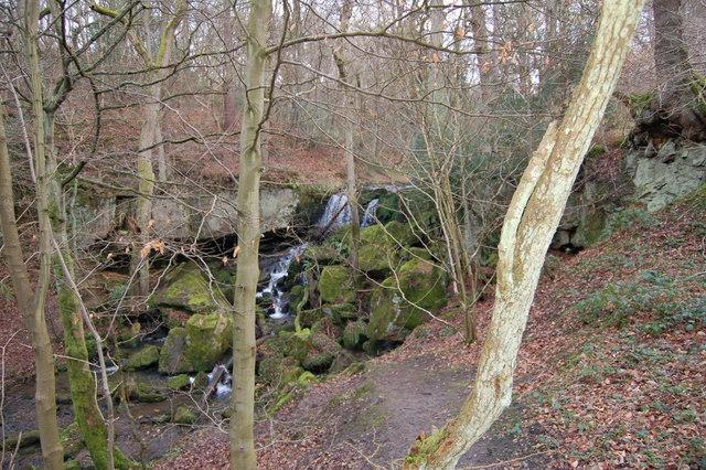 Waterfall in Collierley wood - Pont burn