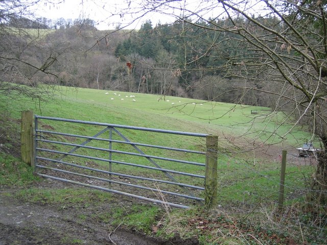 Field Gate and Coed Cochion