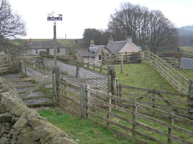 Linglie Farm