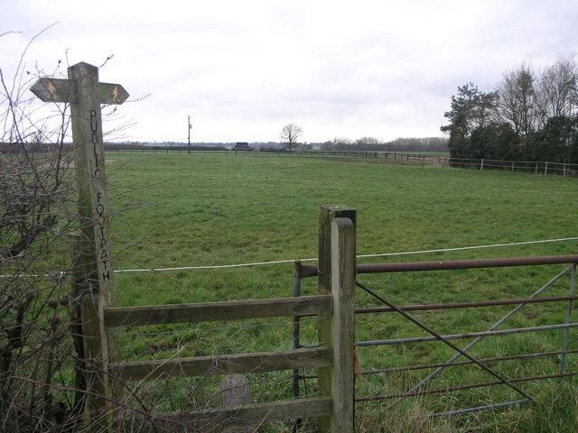 Path and Paddock