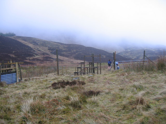 Large stile crossing deer fence