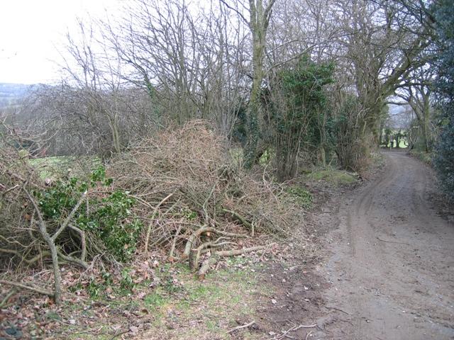 Track from Pen-y-mynydd