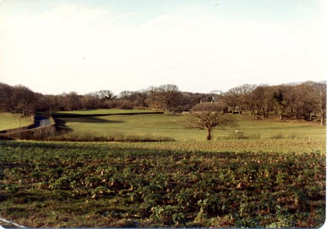 Farmland, Penrhyngerwyn, 1974