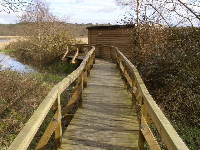 Boardwalk to Keeping Marsh birdwatching hide, Beaulieu Estate