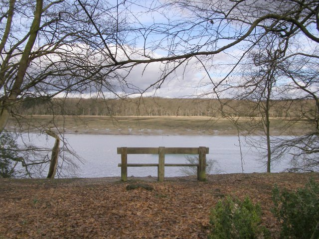 Seat overlooking the Beaulieu River, Beaulieu Estate