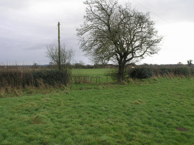 Path to the Airfield