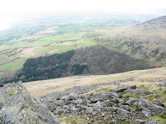 The Cwm-gwared Plantation from the summit of Gyrn Goch
