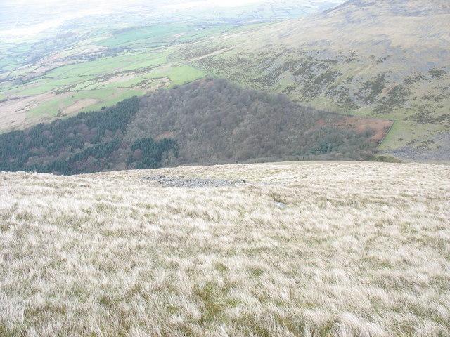 Descending the slope above Afon Hen