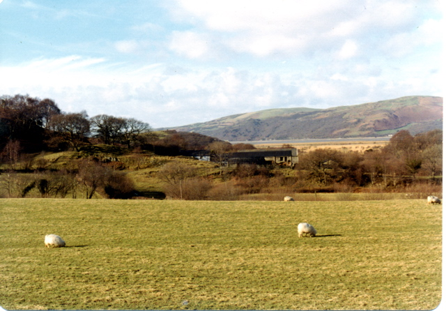 Ynyseidiol, from the main road (A487)