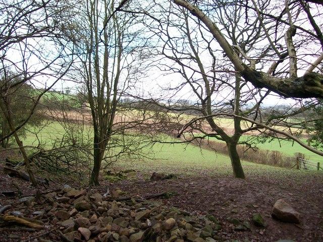 Pile of stones near Bronllys.