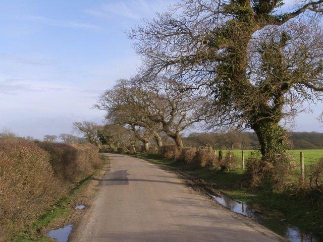 St Leonards Road, west of Bergerie