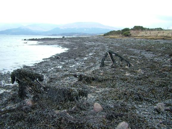 The Point of Rubha Mor, Loch Creran