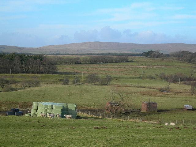 Carbellow Farm