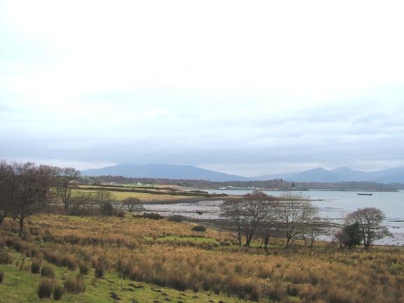Loch Creran Shore