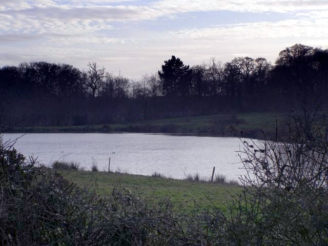 Large pond south of Clobb Farm, Beaulieu Estate