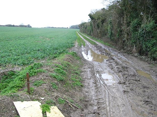 Muddy track heading SW near Hill Farm