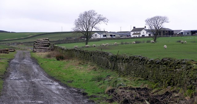 Hill House : Langleydale Common