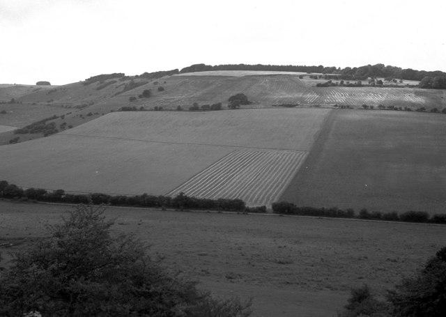 Haydown Hill