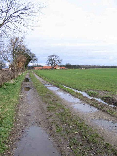 Towards North House Farm