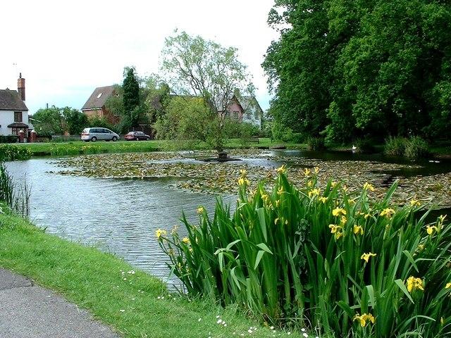Village pond at Hanley Swan