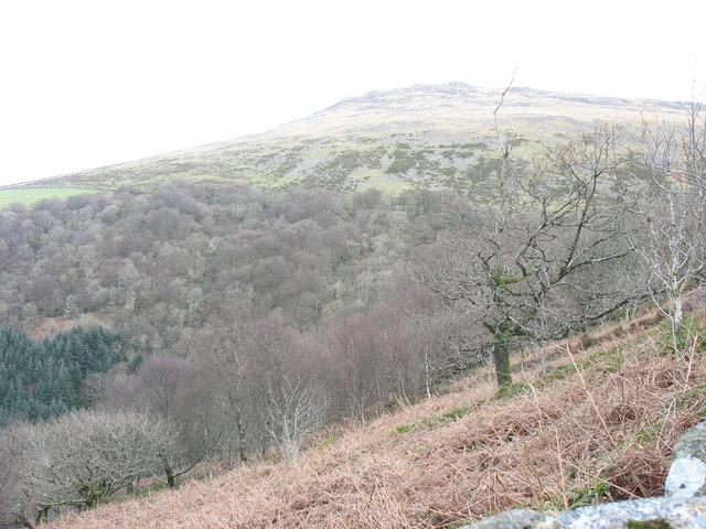 View east across Cwm-gwared