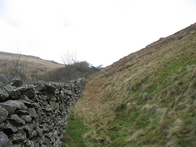 Western wall of the Cwm-gwared Plantation