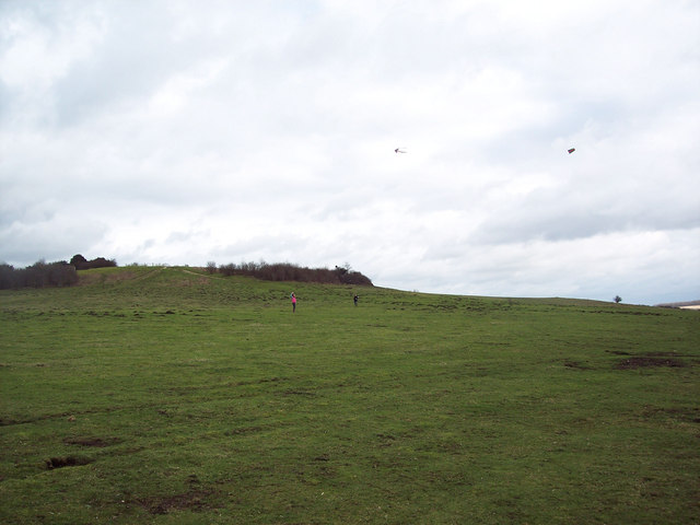 Kite Flying on Stockbridge Down