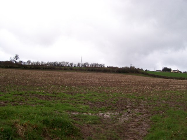 Mast above Minfield Farm, Bronllys